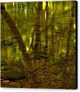 From River Rocks To Forest Reflections Canvas Print by Adam Jewell
