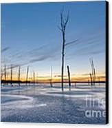 Frost Bite Canvas Print by Michael Ver Sprill