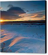Ft Collins Snow Sparkles Canvas Print by Preston Broadfoot