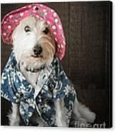 Funny Doggie Canvas Print by Edward Fielding