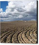 Furrows Before The Storm Canvas Print by Mike  Dawson