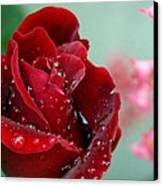 Garden Bouquet Canvas Print by Steven Milner