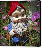 Garden Gnome Canvas Print by Judy Hall-Folde