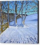Gate And Trees Winter Dam Lane Derbyshire Canvas Print by Andrew Macara