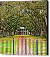 Gateway To The Old South Canvas Print by Steve Harrington