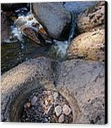 Gauthier Creek Point Of Interest Canvas Print by Sandra Updyke