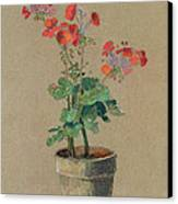 Geraniums In A Pot  Canvas Print by Odilon Redon