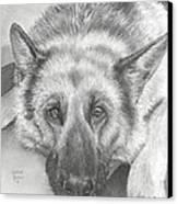 German Shepherd Canvas Print by Heather Gessell