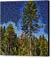 Giant Abstract Tree Canvas Print by Barbara Snyder