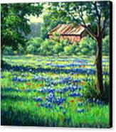 Glen Rose Bluebonnets Canvas Print by Vickie Fears