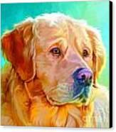 Golden Retriever Art Canvas Print by Iain McDonald