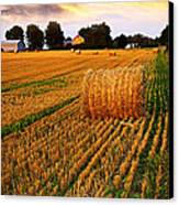 Golden Sunset Over Farm Field With Hay Bales Canvas Print by Elena Elisseeva