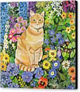 Gordon S Cat Canvas Print by Hilary Jones