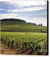 Grand Cru And Premier Cru Vineyards Of Aloxe Corton. Cote De Beaune. Burgundy. Canvas Print by Bernard Jaubert