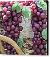 Grapes Canvas Print by Tim Hightower