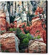 Gray And Orange Sedona Cliff Canvas Print by Carol Groenen