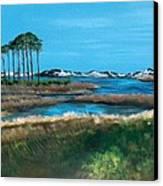 Grayton Beach State Park Canvas Print by Racquel Morgan