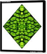 Green Banana Canvas Print by Roberto Alamino