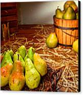 Green Pears In Rustic Basket Canvas Print by Olivier Le Queinec