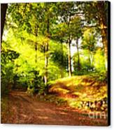 Green Trees Canvas Print by Boon Mee