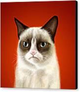 Grumpy Cat Canvas Print by Olga Shvartsur