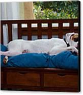 Guard Dog Canvas Print by Dennis Reagan