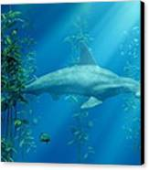 Hammerhead Among The Seaweed Canvas Print by Daniel Eskridge