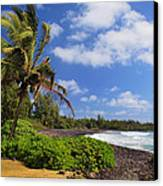 Hana Beach Canvas Print by Inge Johnsson