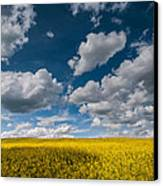 Happiness Canvas Print by Davorin Mance