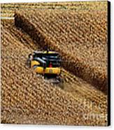 Harvest Time Canvas Print by Eva Kato