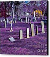 Haunted Cemetery Canvas Print by Alys Caviness-Gober