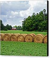 Hay Day Canvas Print by Steven  Michael