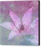 Heavenly Petals Canvas Print by Betty LaRue