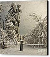 Heavy Laden Blizzard Canvas Print by Lois Bryan