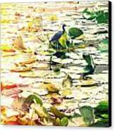 Heron Among Lillies Photography Light Leaks Canvas Print by Chris Andruskiewicz