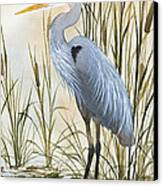 Heron And Cattails Canvas Print by James Williamson