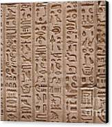 Hieroglyphs At The Temple Of Philae Canvas Print by Stephen & Donna O'Meara