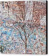 High Line Palimpsest Canvas Print by Rona Black
