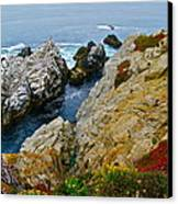 Highway One Canvas Print by Michael Blesius