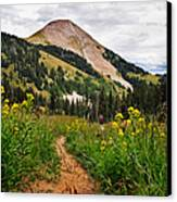 Hiking In La Sal Canvas Print by Adam Romanowicz