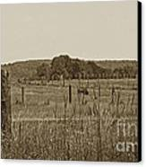 Home On The New Range Canvas Print by Skip Willits