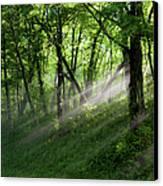 Hope Lights Eternal - Blue Ridge Parkway I Canvas Print by Dan Carmichael