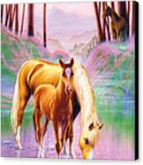 Horse And Foal Canvas Print by Andrew Farley