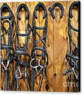 Horse Bridles Hanging In Stable Canvas Print by Elena Elisseeva