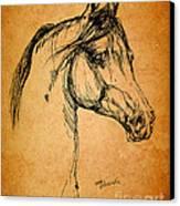 Horse Drawing Canvas Print by Angel  Tarantella