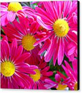 Hot Pink Canvas Print by Julie Palencia
