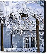 House Under Snow Canvas Print by Elena Elisseeva