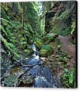 How Green Is My Glen Canvas Print by Gary Eason