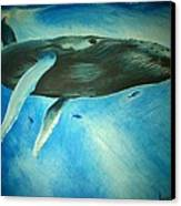 Humpback Whale Canvas Print by Lucy D