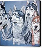 Huskies By J. Belter Garfunkel Canvas Print by Sheldon Kralstein